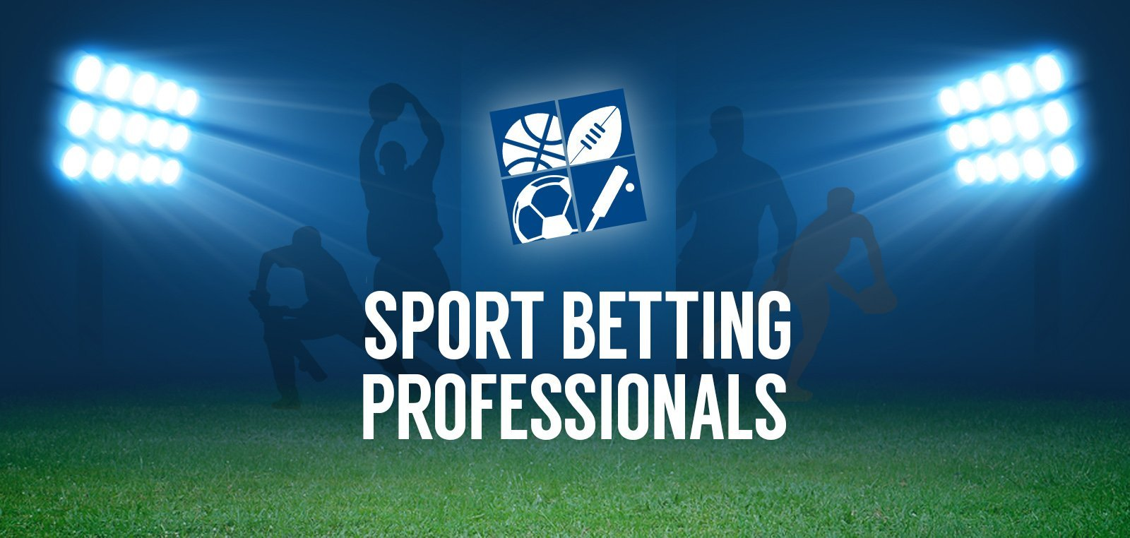 Guide in betting professionally