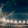 Live Cricket Betting Guide 2021